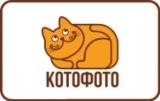 Бонусная программа Котофото КэтКоины